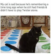 Sad Cat Memes - my cat is sad because he e remembering cat meme cat planet cat