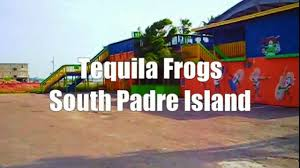 south padre island tequila frogs youtube