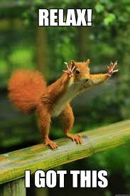 Relax Meme - relax i got this red squirrel quickmeme