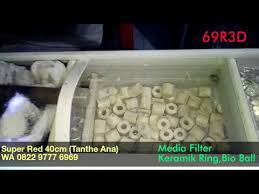 membuat kotak filter aquarium sanyo water filter to go on sale in indonesia worldnews