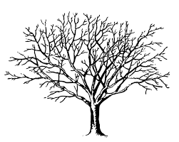 printable coloring page of a scary tree with spider web coloring