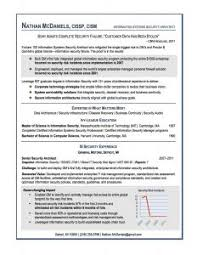 examples of resumes 81 marvellous formats for sample quality