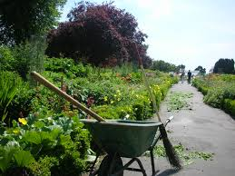 Botanic Gardens by Botanic Gardens Teagasc Agriculture And Food Development Authority