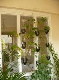 17 best growing food indoors images on pinterest gardening