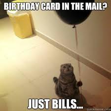 cat meme birthday cards u2014 david dror