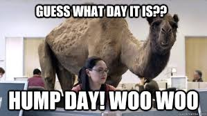 Hump Day Memes - guess what day it is hump day woo woo hump day quickmeme