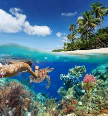 Coral Reefs Of The World Map by The 57 Best Snorkeling Spots In The World The Snorkel Store