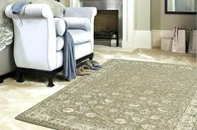 Brown Zebra Area Rug Zebra Area Rugs Rugs Zebra Black Beige Area Rug Reviews Zebra