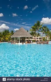 hotel swimming pool thatch pool bar bayahibe dominican republic