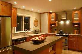 Contemporary Kitchens Designs Transitional Kitchen Designs Layout And Photos
