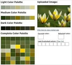 color combo generator what color palette generator suits you best 46 cool color tools