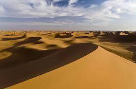 Custom Dune Flags Crazy In The Desert Men U0027s Journal