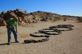 anza borrego desert stillhowlyntravels anza borrego desert happy new year