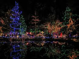 holiday festival of lights charleston christmas in vancouver on two wheels bikabout