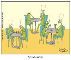 Speed Dating Meme - the entomology of speed dating science of relationships