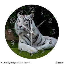 white bengal tiger large clock designer