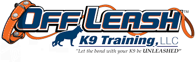 dog trainer central florida dog training orlando florida dog