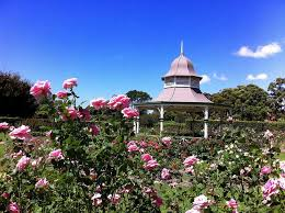 Wollongong Botanic Gardens Wollongong Illawarra Weddings Gardens Wedding Locations
