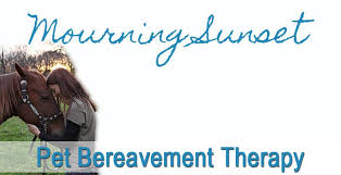 pet bereavement mourning sunset pet bereavement therapy pethealthcare co