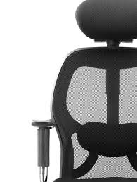 Office Chair Price In Mumbai Buy Hof Professional Mesh Back Office Chair Online In India