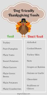including dogs in your thanksgiving day celebration nutrition