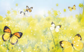 Beautiful Pictures Of Spring by 44 Pretty Spring Backgrounds