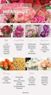 Flowers Colors Meanings - 8 rose colour meanings the koch blog