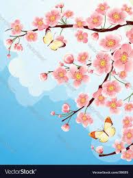 sakura cherry blossom royalty free vector image
