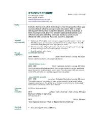 Sprint Resume Literature Essay Example Top Home Work Ghostwriter Websites Usa