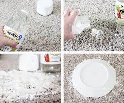 How To Get Dry Stains Out Of Carpet A Simple Effective Remedy For Pet Stains On Carpets One Good