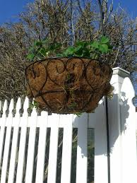 Diy Strawberry Planter by Diy Hanging Strawberry Planter Learning As I Go