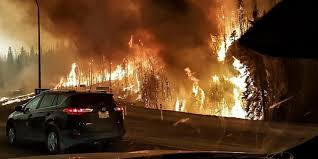 Alberta Wildfire Fitness Test by O Fort Mcmurray Wildfire Facebook Jpg