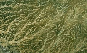 fractal pattern in nature fractal patterns in nature found on google earth twistedsifter