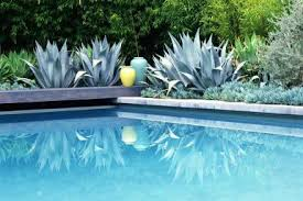 Decorating Around The Pool Landscaping Around Swimming Pools Officialkod Com