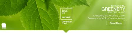 2017 Color Of The Year Pantone Pantone Color Chips And Color Guides For Accurate Color