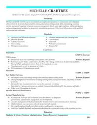 recruiter cv example for admin livecareer