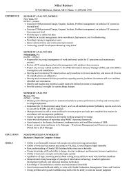 sle resume for business analyst role in sdlc phases system senior it analyst resume sles velvet jobs