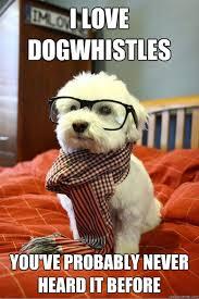 Christmas Dog Meme - the best of hipster dog