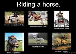 Horse Riding Meme - 83 foolish horse memes