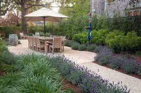 a lavender path verdance fine garden design