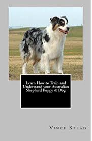 training a australian shepherd puppy training australian shepherds kindle edition by cynthia davis