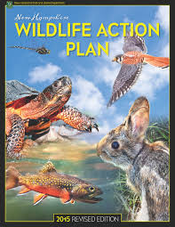 Fish And Game Table Wildlife Action Plan Wildlife New Hampshire Fish And Game