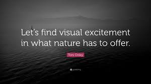 quote excitement toni onley quote u201clet u0027s find visual excitement in what nature has