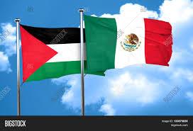 Palistinian Flag Palestine Flag Mexico Flag 3d Image U0026 Photo Bigstock