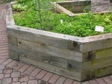 tips for a raised bed vegetable garden diy