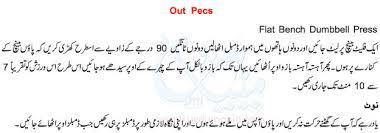 Flat Bench Dumbell Men Bodybuilding Chest Exercise In Urdu Weightlifting Tips
