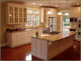 Mocha Kitchen Cabinets by Kitchen Pink Kitchen Cabinets Kitchen Cabinet Slides Kitchen