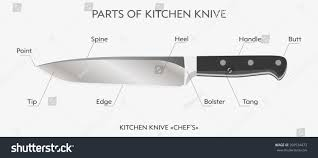 chef knife anatomy choice image learn human anatomy image