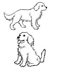 cartoon drawing of a golden retriever google search dog stuff