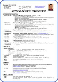 standard cv format pdf format cv exol gbabogados co